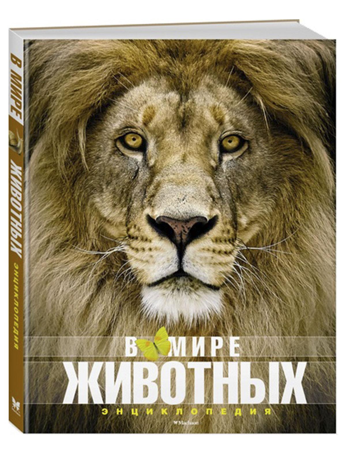 Купить 2025541, Книга ИГ Азбука-Аттикус, 9002529881321