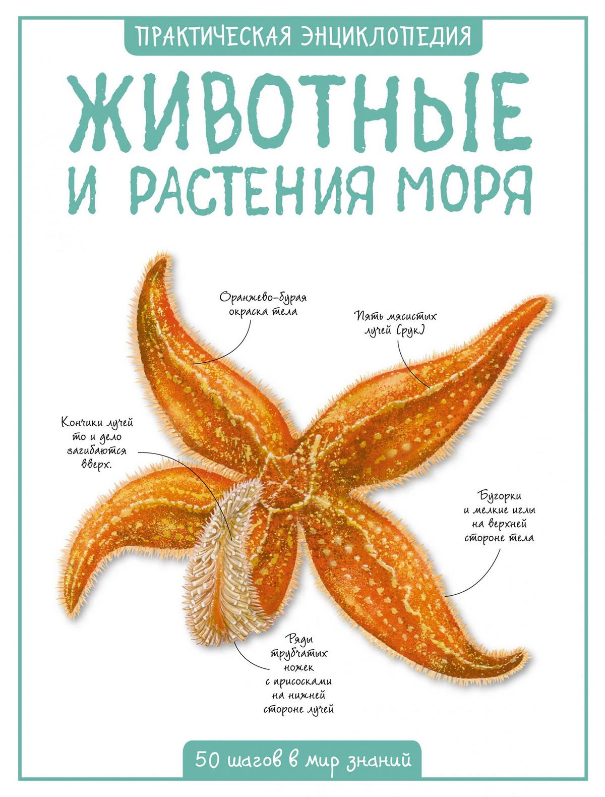 Купить 2049181, Книга ИГ Азбука-Аттикус, 9001229980495