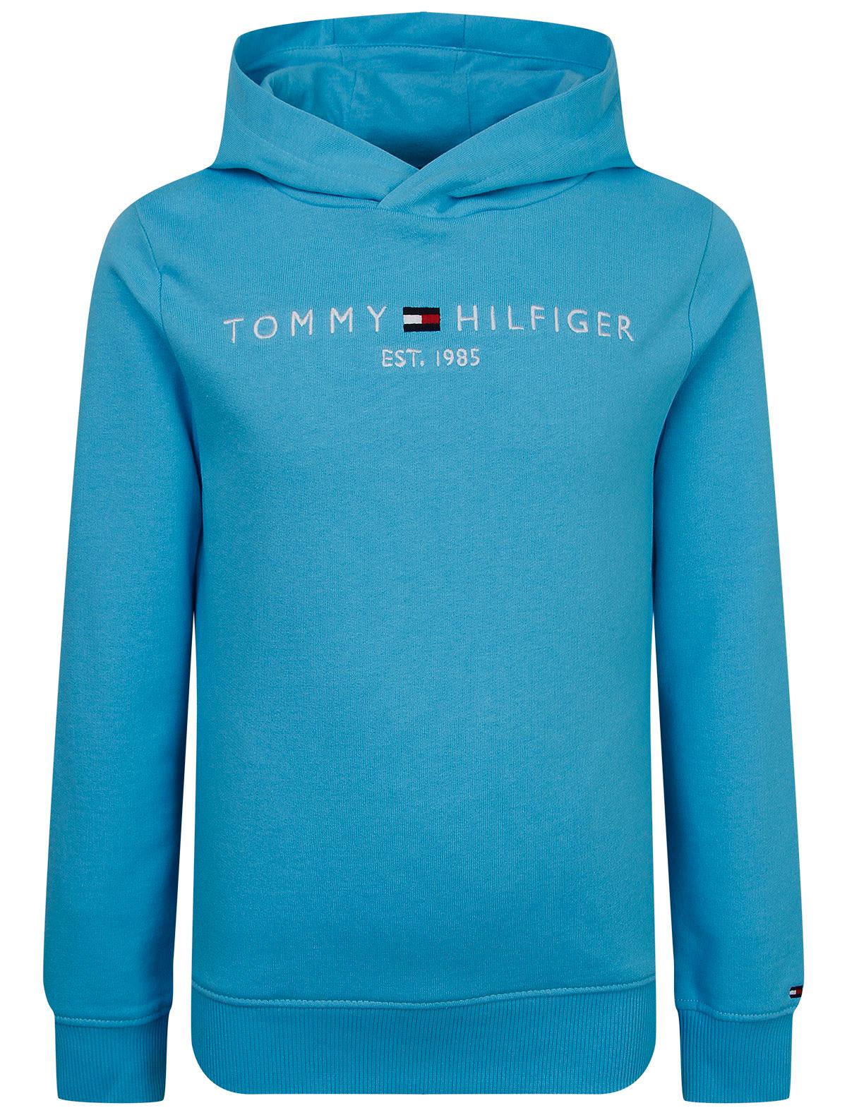 Купить 2312976, Свитшот TOMMY HILFIGER, голубой, 0084529171854