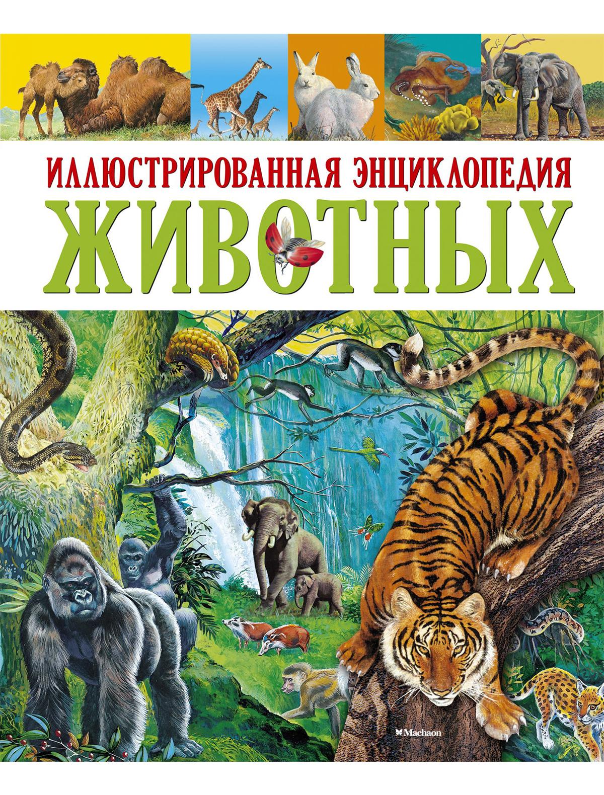 Купить 2049383, Книга ИГ Азбука-Аттикус, 9002529980550