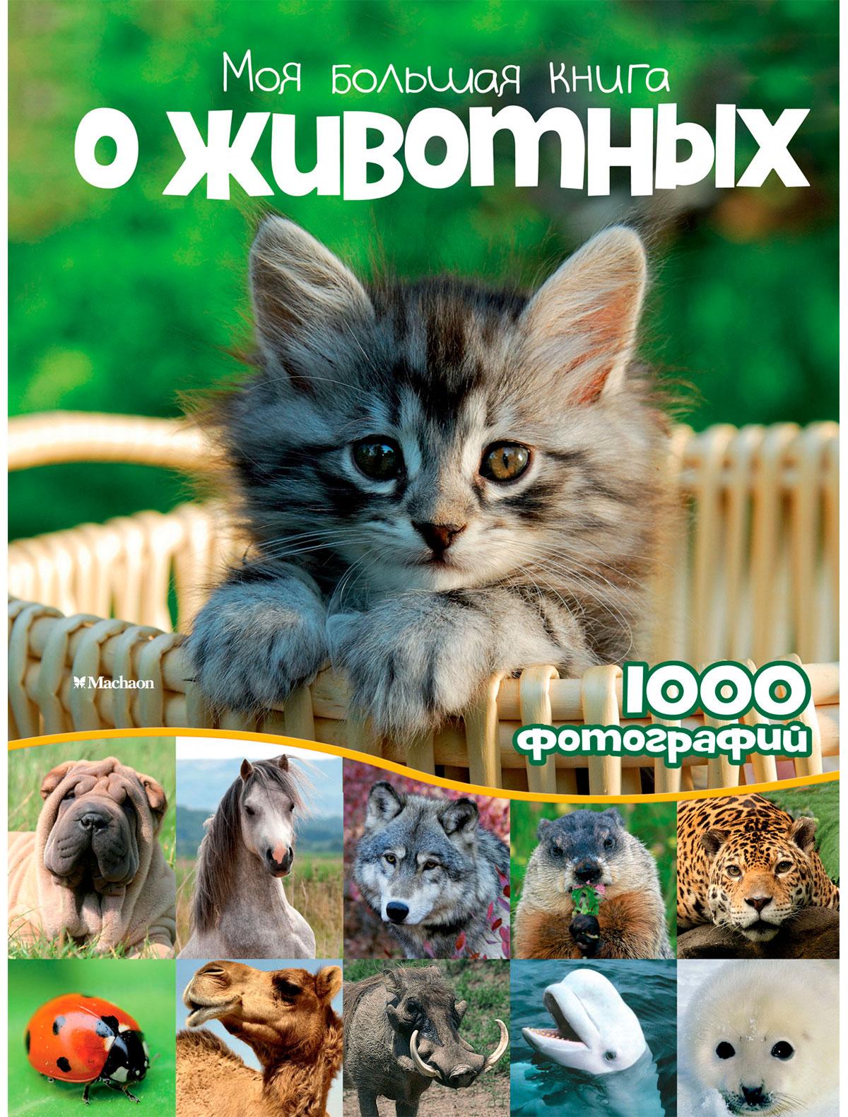 Купить 2239395, Книга ИГ Азбука-Аттикус, 9004529080575