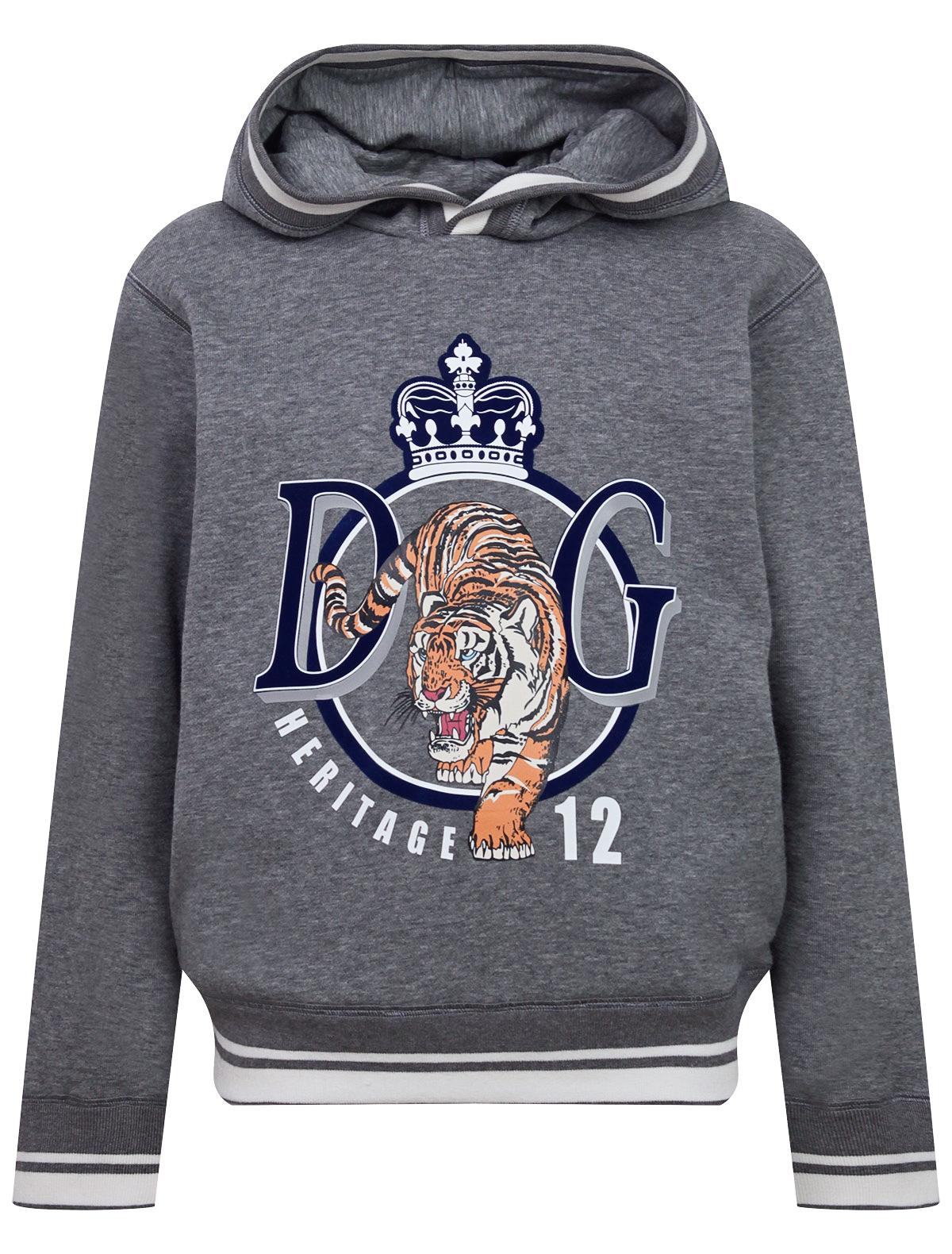 Купить 2222951, Худи Dolce & Gabbana, серый, Мужской, 0094519071712