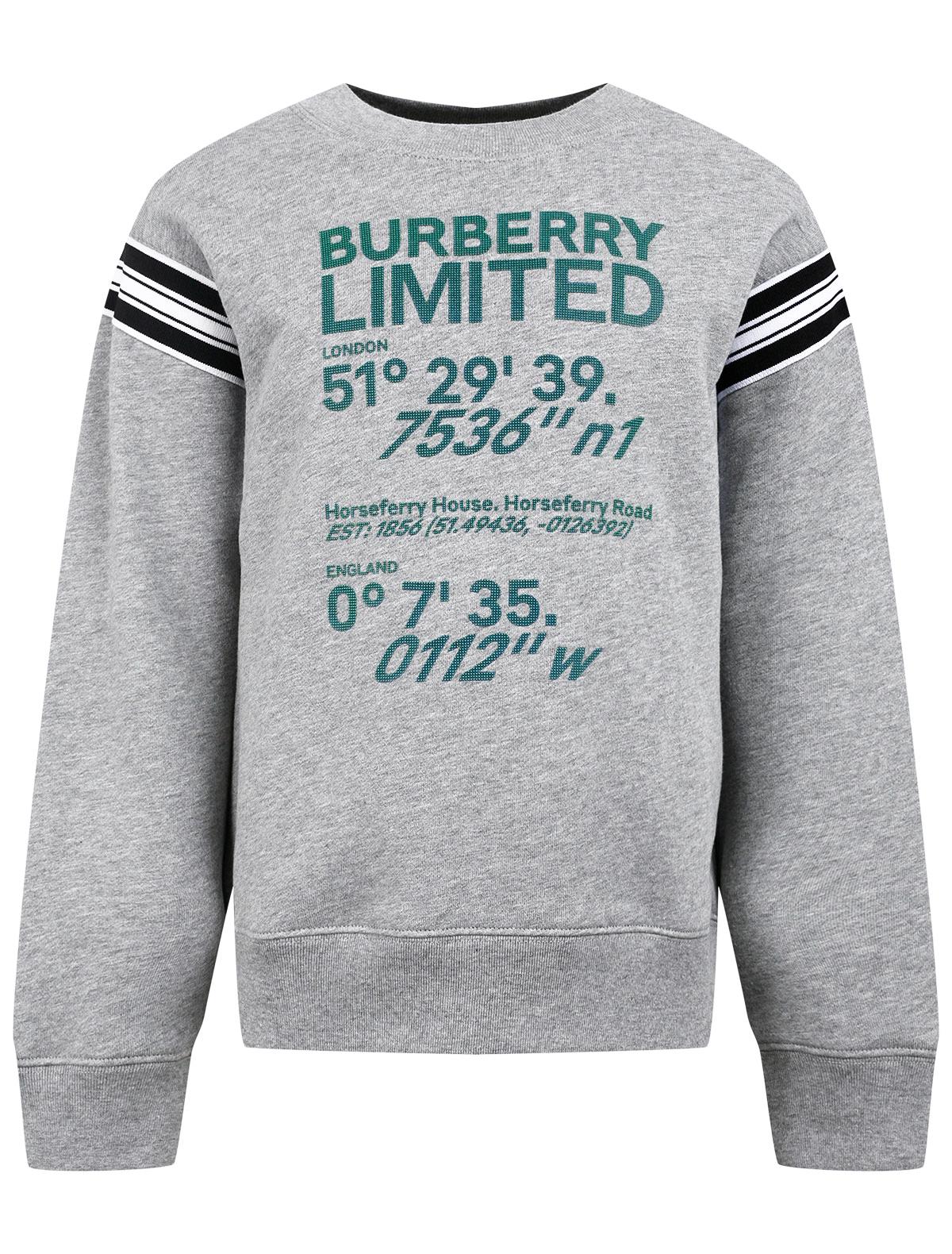 Купить 2310086, Свитшот Burberry, серый, Мужской, 0084519171451